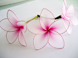 Beautybymay hair accessories makeup artist eyelash hair accessories plumeria mightylinksfo